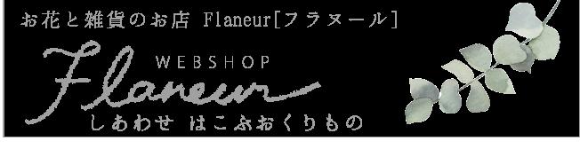 bn_flaneur
